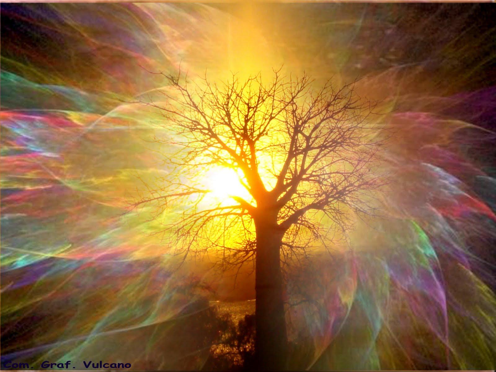 Prendere coscienza della propria anima gruppo di for Piani di luce del giorno